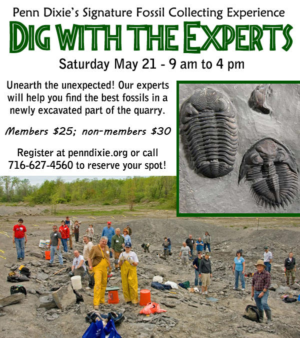 Register for Dig with theexperts!