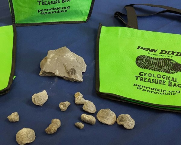 bag_w_fossils