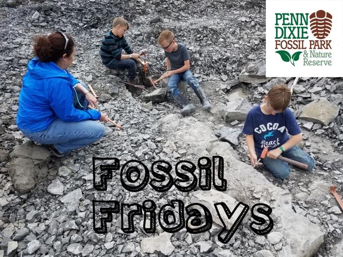 Fossil Fridays2