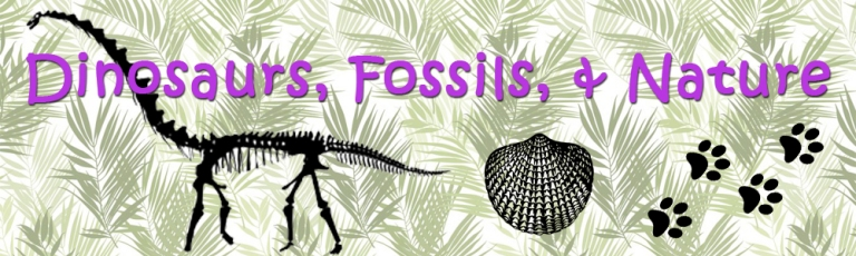 DinosFossilsNature18