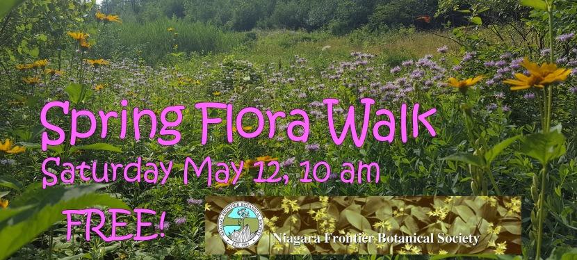 Spring Flora Walk