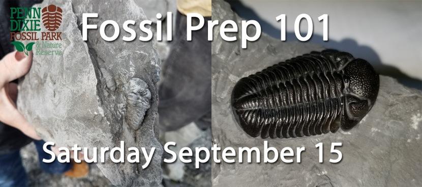 Fossil Prep 101