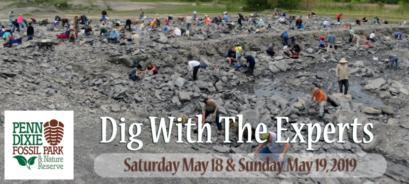 May 2019: Dig With The Experts