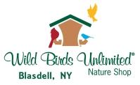 wild-bird