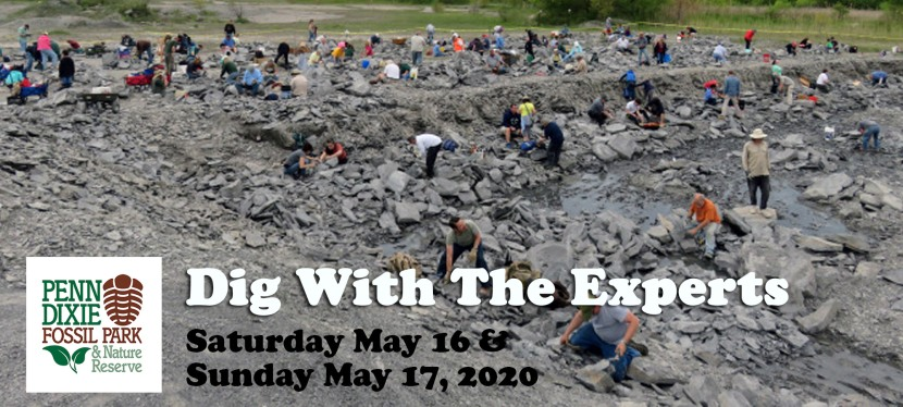 2020 Dig With The Experts
