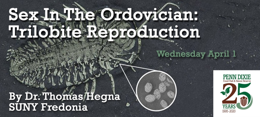 Sex in the Ordovician: Trilobite Reproduction