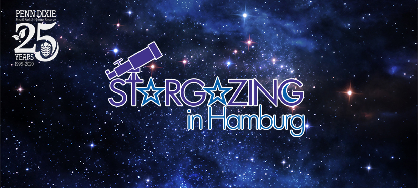 Stargazing in Hamburg