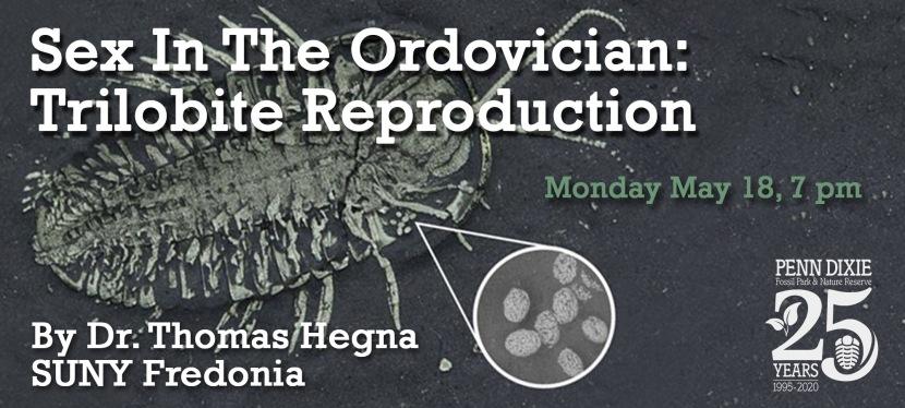 Sex in the Ordovician: TrilobiteReproduction
