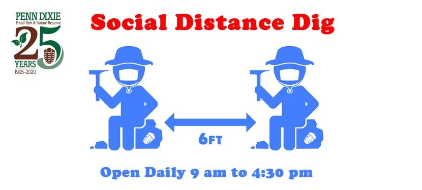 Social Distance Dig